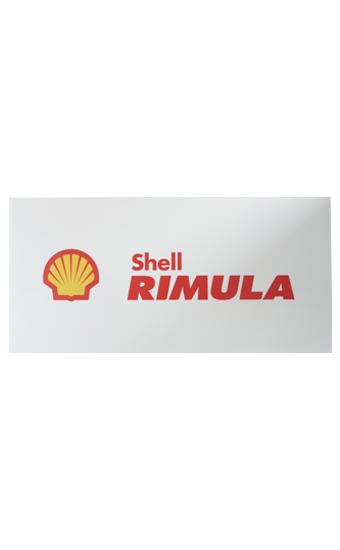 Shell Rimula Corflute
